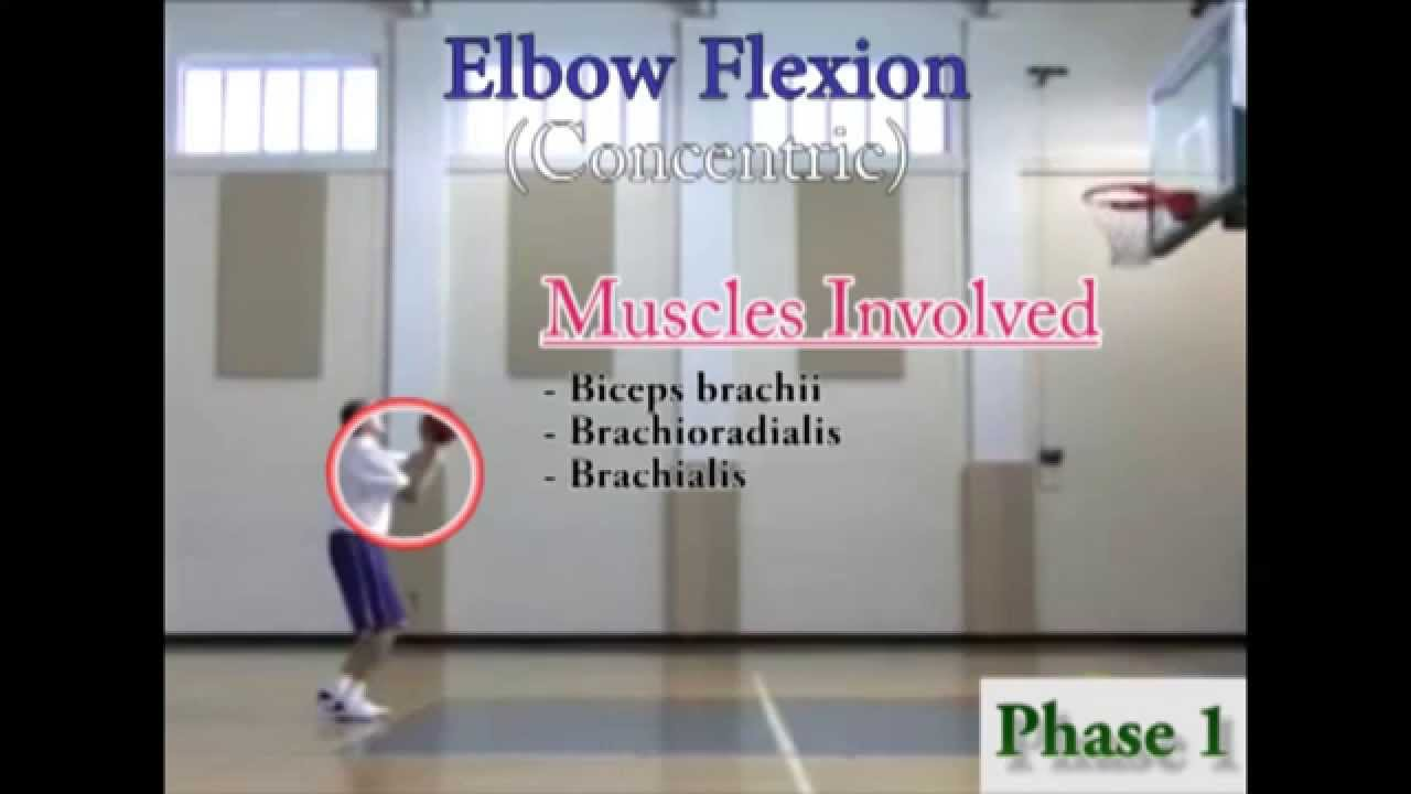 Kinesiology Of A Free Throw Wmv