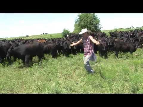 Farmer Derek does the Whip Nae Nae
