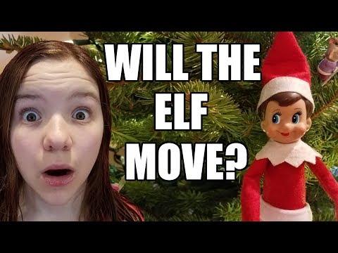 Does Elf On The Shelf Really Move? Elf Watch All Night! | Babyteeth More!
