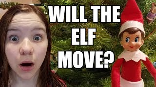 Does Elf On The Shelf Really Move? Elf Watch All Night! | Babyteeth More!