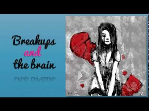 The Neurobiology Behind Breakups | Psychology Today New Zealand
