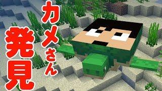 【カズクラ】かっかっ亀さん発見!!マイクラ実況 PART267