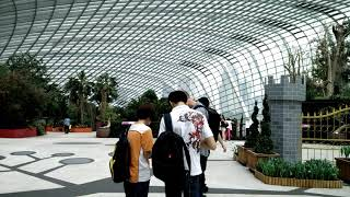 Gardens by The Bay Singapore Shot on Oneplus 1