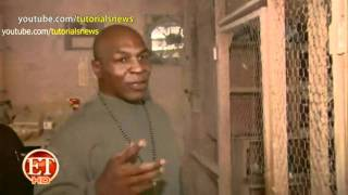 Mike Tyson Takes On Pigeon Racing