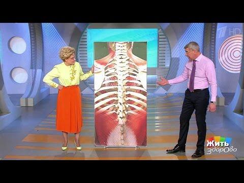 воспаление мышц спины лечение