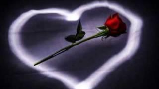 فهد القصير- الورد المشتاق