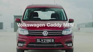 vw volkswagen caddy mpv singapore street dogs exclusively mongrels sosd asd