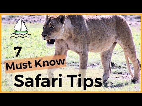 7  BEST AFRICAN SAFARI TIPS -(Tanzania-Serengeti, Ngorongoro Crater, Manyara, Tarangire) #33