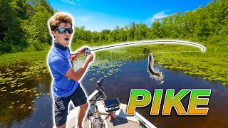 EPIC Backwater Fishing for NORTHERN PIKE Vicious Strikes