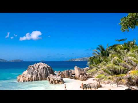 Seychelles Offshore Company Formation
