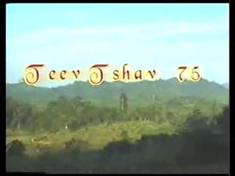 Teev Ntshav 75 1-1 thumbnail