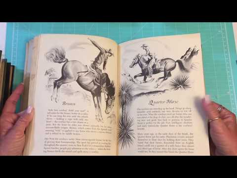 Vintage Books | Lots Of Old Books Pt. 2| November 2017