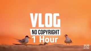 1 Hour Alex Keeper - Can You Stay (Vlog No Copyright Music)