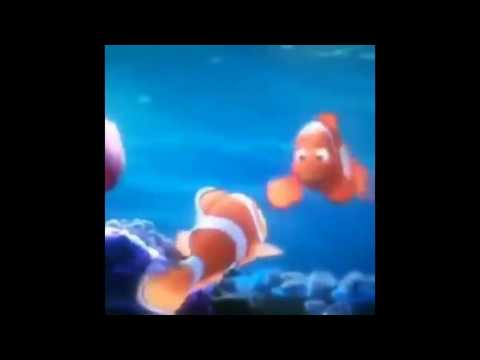 FINDING NEMO BAD LIP READING - FISH TITIES