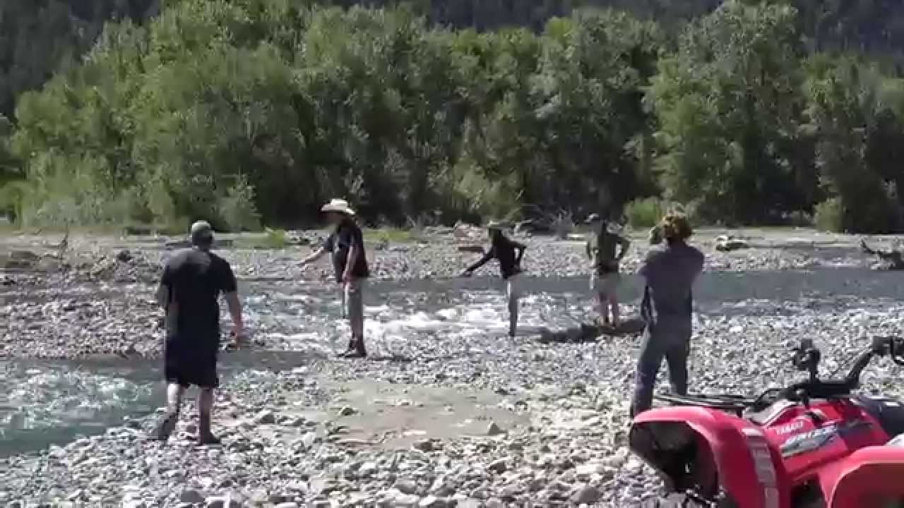 Fly fishing the shoshone river southfork outside of cody for Cody wyoming fly fishing