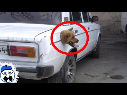 15 Real Life Glitches Caught On Camera