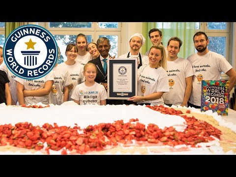 Largest vegan cake – Guinness World Records Day