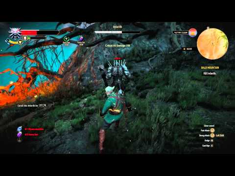 Witcher 3 - Imerlith Boss Fight