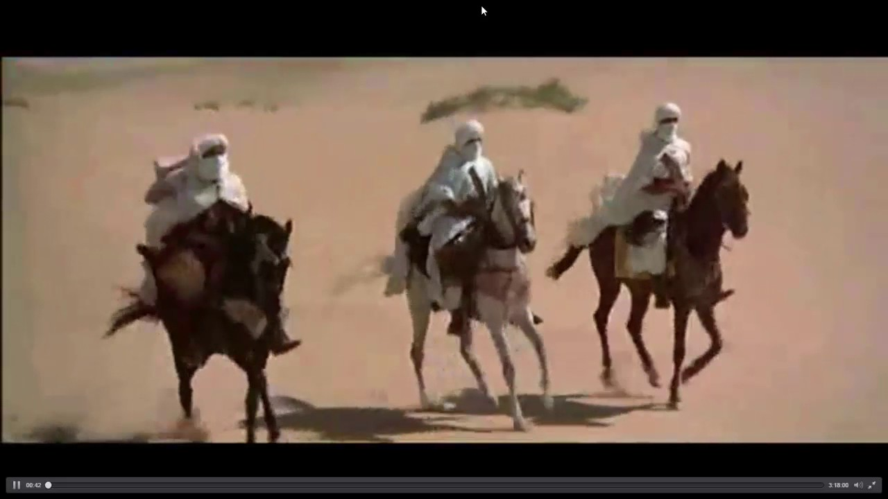 Arabian Horses in Desert - YouTube