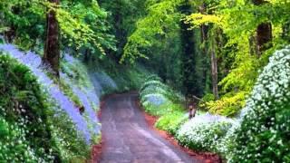North Indian Music-Vedang Dharashive- Kedar