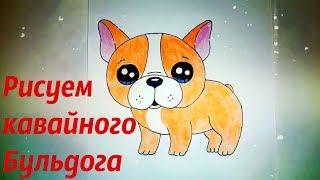Рисуем Кавайную собачку Бульдога вместе! Как нарисовать собаку Бульдога? #drawings №228