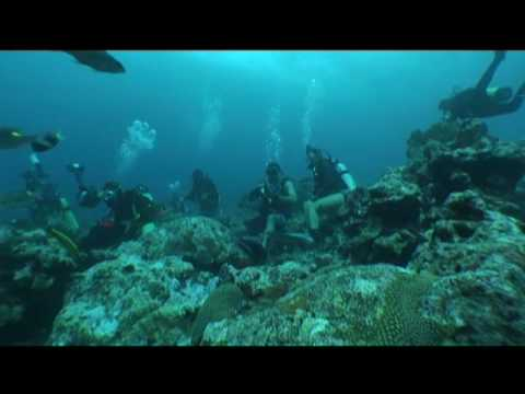 Ecology / sustainability: Indonesian Reef Protection Part #2