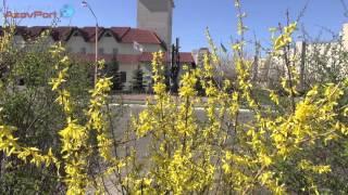 Бровари 27 річниця аварії на ЧАЕС ПРЕЛЮДІЯ(, 2013-04-29T20:19:01.000Z)
