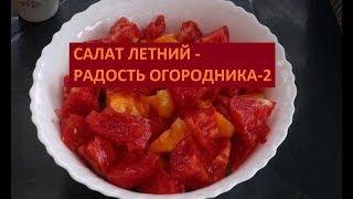 САЛАТ ЛЕТНИЙ -  РАДОСТЬ ОГОРОДНИКА 2 (31.08.2017)
