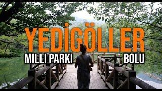 Yedigöller Milli Parkı BOLU   Gezi Günlükleri