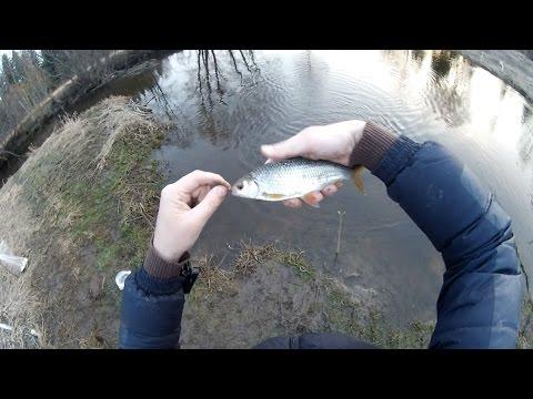 ловля плотвы ранней весной на малых реках