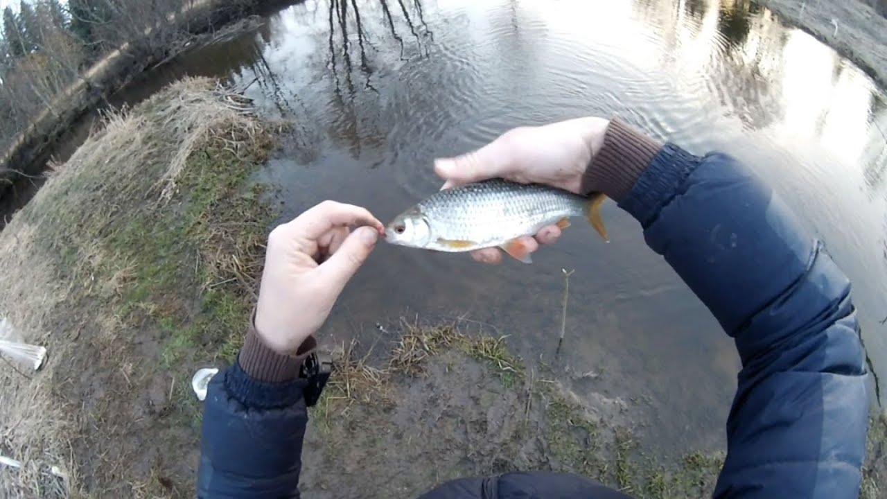 Рыбалка весной на удочку на плотву