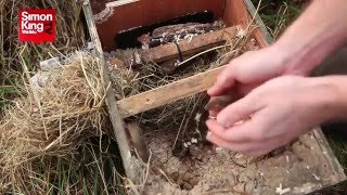 Harvest Mouse Release at Wild Meadows
