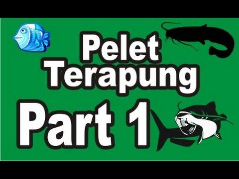 Cara Pembuatan Pelet Ikan Terapung - part 1
