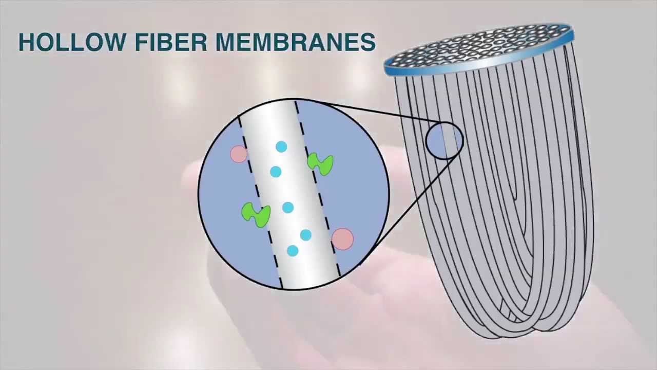 Sawyer Mini Water Filter Hollow Fiber Membranes Youtube