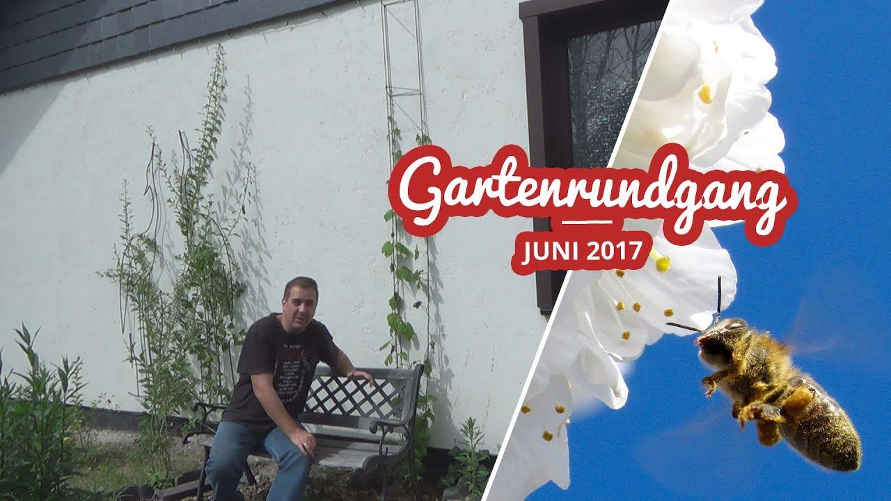 Gartenrundgang Juni 2017 Artikelbild