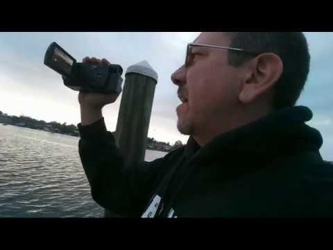 Crystal River (streamed live Friday 1/12/18)