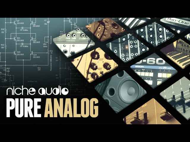 Pure Analog Maschine Expansion & Ableton Live Pack - From Niche Audio #1