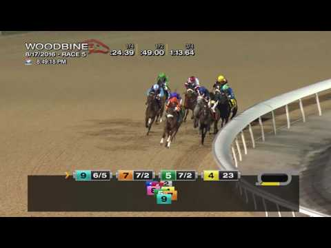 Woodbine, Tbred, Aug. 17, 2016 Race 5