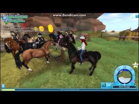 SSO ~ LP ~ Welsh pony kopen!