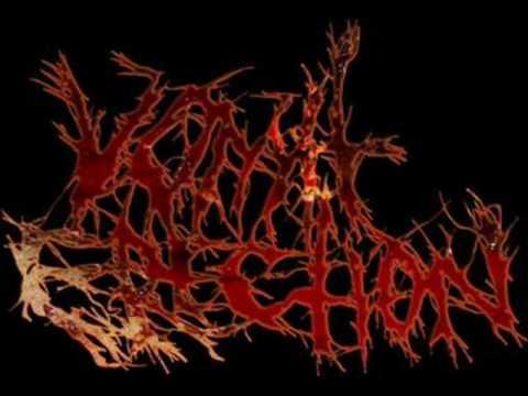 Vomit Erection - Scatological Pig Vomitorium