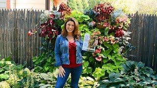 How to Grow a Living Wall Garden (a Book Trailer)