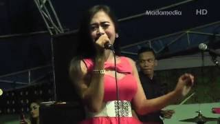Video Sambalado - Windy Jessica OM. PERSADA PLUS 2016 download MP3, 3GP, MP4, WEBM, AVI, FLV Februari 2018