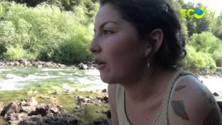Marcha por la defensa del lago Pirehueico, río Fuy y lago Neltume
