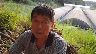 땅 (논,밭)  천평으로 일억원 벌기 목표
