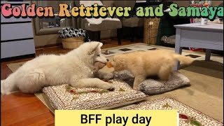 BFF play day…