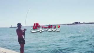 Video TENRYU Dragon Express corvina mulloway jewfish download MP3, 3GP, MP4, WEBM, AVI, FLV Desember 2017
