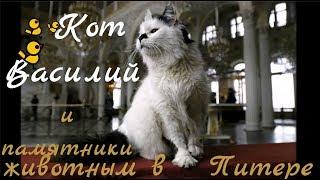 Кот Василий и памятники животным  в Питере