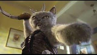 Кошки против Собаки Кто Кого Видео Приколы с Животными
