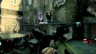Call of duty Black ops Zombies GLITCH Funny
