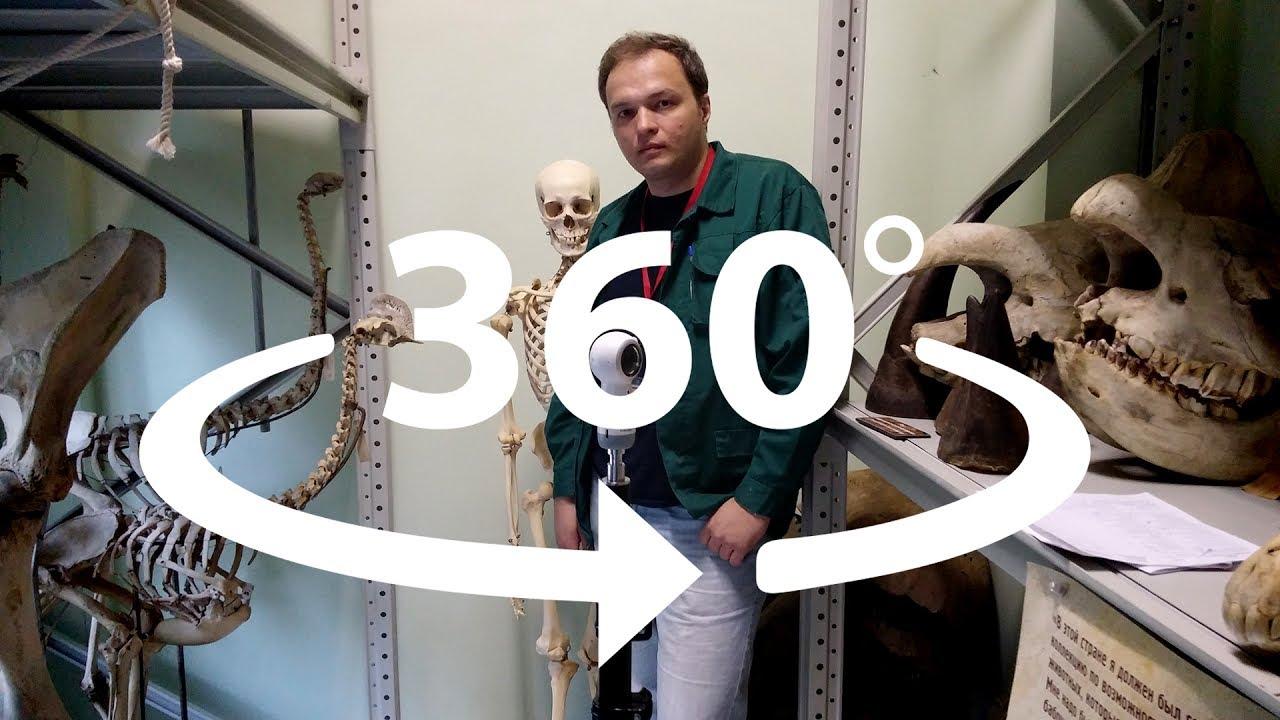 Остеологическая коллекция Дарвиновского музея в 360